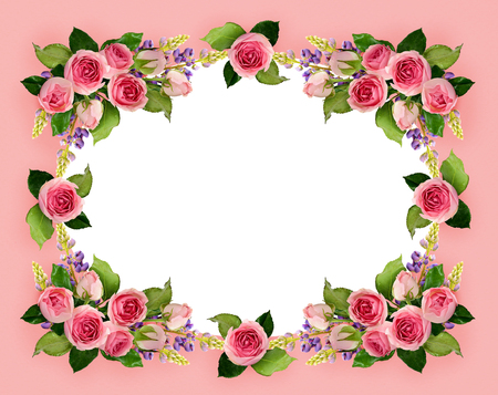 Pink rose flowers and buds frame on pink background. Flat lay. Top view.