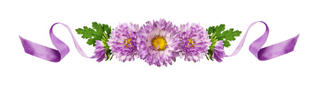 Curled purple silk ribbon and aster flowers composition isolated on white