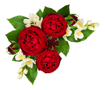 Red rose and philadelphus flowers composition isolated on white background. Top view. Flat lay.
