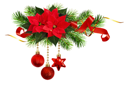 Christmas arrangement with poinsettia flower, pine twigs, Christmas decorations and curled ribbons isolated on white background