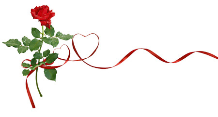Red silk ribbon hearts and rose flower for Valentines day isolated on white background  版權商用圖片