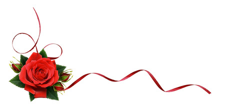 Red rose flowers and silk ribbon in corner arrangement isolated on white background.