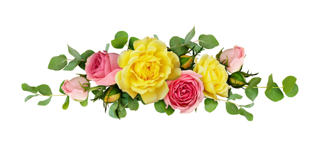 Pink and yellow rose flowers with eucalyptus leaves in a line arrangement isolated on white background. Flat lay. Top view.
