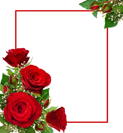 Corner arrangements with red roses and gypsophila flowers and buds and isolated on white background. Flat lay. Top view. Stockfoto