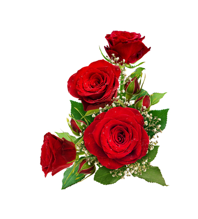 Corner arrangement with red roses and gypsophila flowers and buds isolated on white background. Flat lay. Top view. Stock Photo