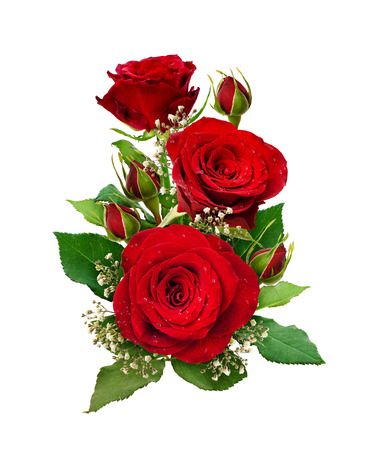 Romantic arrangement with red roses and gypsophila flowers and buds isolated on white background