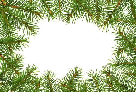 Frame with twigs of Christmas tree isolated on white background. Flat lay. Top view.