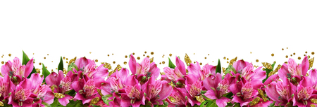 Pink alstroemeria flowers and glitter confetti in a bottom border isolated on white background