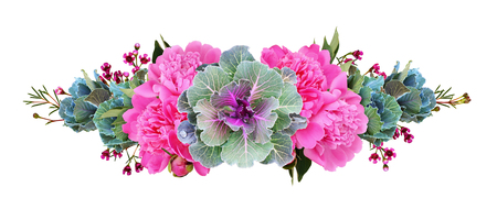 Ornamental kales and pink peony flowers in a floral line arrangement isolated on white. Decorative cabbage. Brassica oleracea var. acephala.