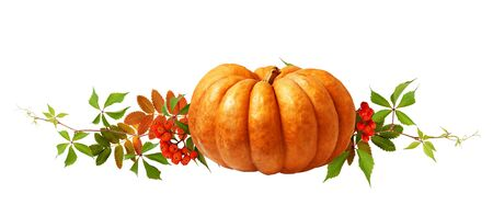 Ripe pumpkin, rowanberries and autumn colorful leaves isolated on white background. Halloween arrangement.