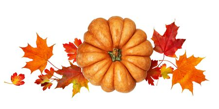 Round pumpkin with autumn colorful leaves isolated on white background. Top view. Flat lay.
