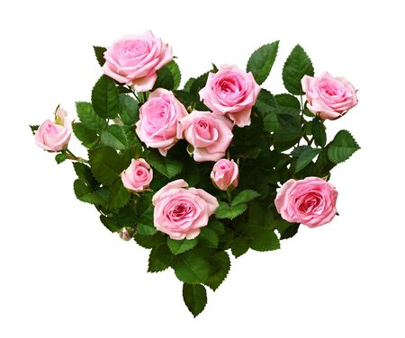 Fleurs roses roses dans un arrangement en forme de coeur isolé sur blanc Banque d'images