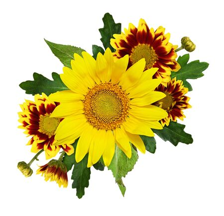 Sunflower, yellow and red chrysanthemum flowers, buds and leaves in a floral arrangement isolated on white
