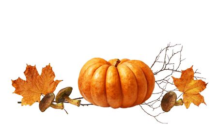 Ripe pumpkin, mushrooms and autumn orange maple leaves isolated on white background.