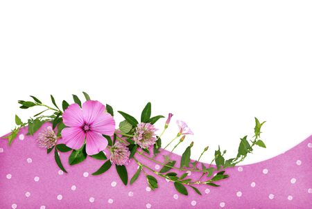 Wild pink flowers and green grass in a wave floral arrangement on white and polka dot paper background Imagens