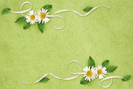 Daisy flowers and silk ribbon in a line floral arrangements on green craft paper background