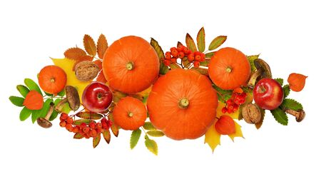Autumn arrangement with pumpkin, rowanberries and colorful leaves isolated on white. Top view. Flat lay.