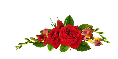 Red roses and freesia flowers in a floral liner arrangement isolated on white background Stock Photo