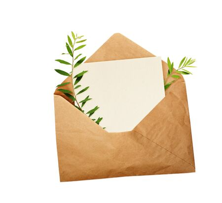 Opened craft paper envelope with empty piece of paper and green twigs with leaves isolated on white background