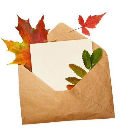 Opened craft paper envelope with empty piece of paper and autumn leaves isolated on white background