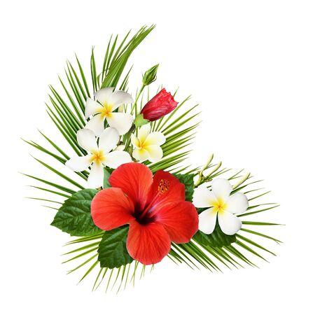 Ibisco rosso e fiori di fragipani con foglie tropicali verdi in una disposizione esotica ad angolo isolata su sfondo bianco white Archivio Fotografico