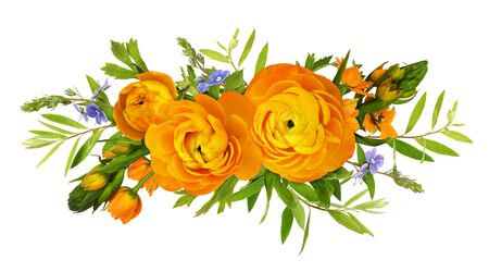 Orange ranunculus and ornithogalum flowers in a floral composition isolated on white Standard-Bild