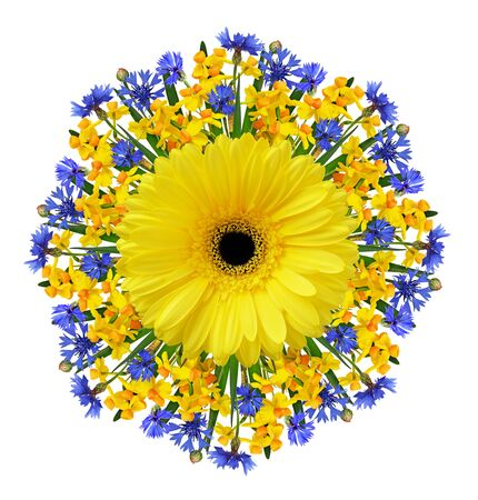Bunch-flowered narcissus flowers, blue knapweedsand yellow gerbera in a spring round arrangement isolated on white background Фото со стока