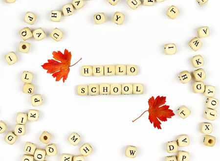 Wooden beads with english letters and text HELLO SCHOOL on white background