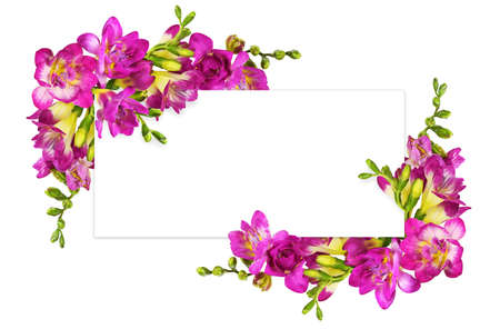 Pink and yellow freesia flowers in a corners arrangements on white card isolated on white background