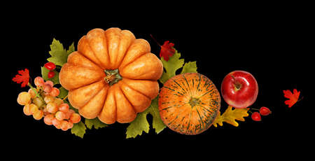 Autumn arrangement with pumpkins, grapes, apple and colorful leaves isolated on black. Top view. Flat lay.