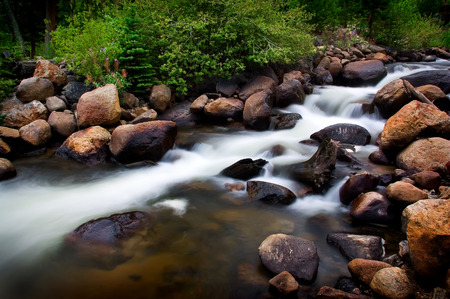 rushing water: Mountain Stream With Foilage