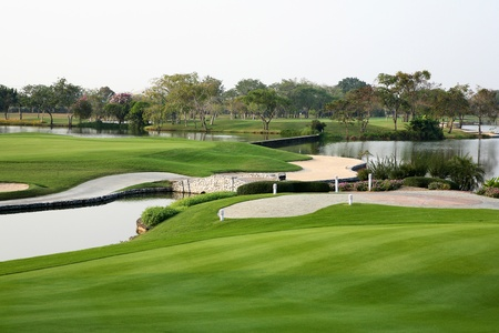 golf field: Golf course landscape