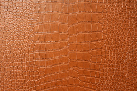 Leather with crocodile dressed texture.  Stock Photo