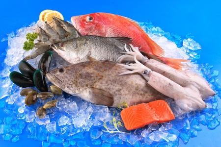 seafood Stock Photo - 10580261