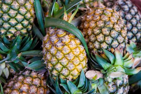 Close-up Pineapple Zdjęcie Seryjne