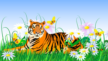 wild living: tiger and flowers