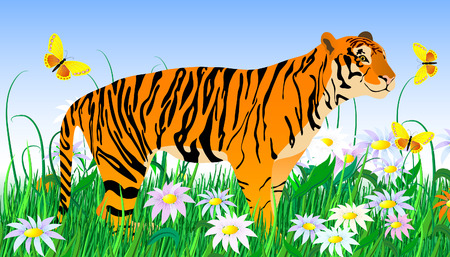 tiger and flowers Vector