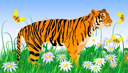 tranquility: Tigre y flores
