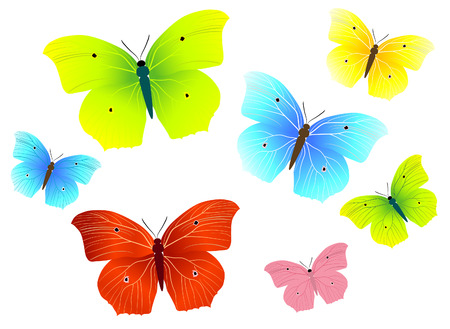 uncultivated: butterfly