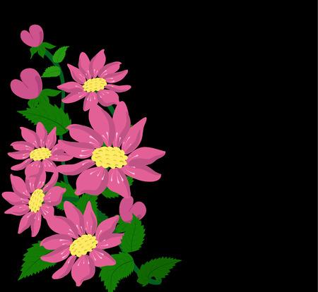 hollyhocks: flowers hollyhocks