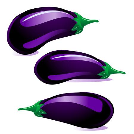aubergine: Auberginen