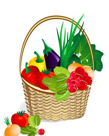 canastas de frutas: verduras en la cesta de la Vectores