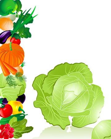rzepa: Kapusta warzyw