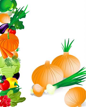 Vegetables onion Stock Vector - 6514027