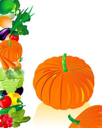vegetables pumpkin Stock Vector - 6514021