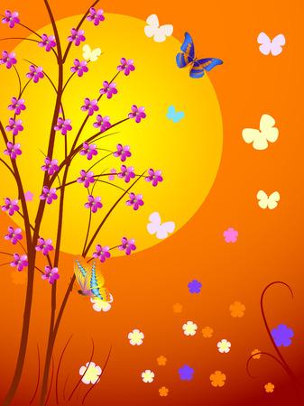 cherry the sun Vector