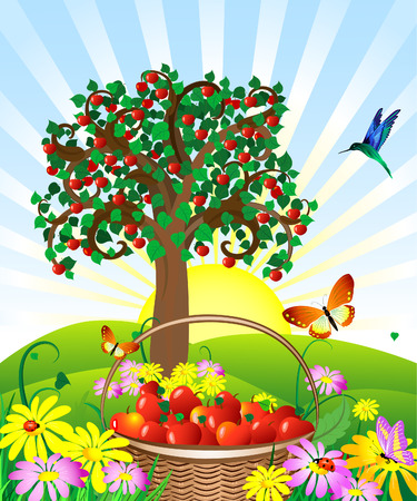 basket of apples in the meadow Vector