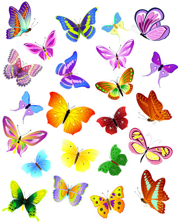 fluttering: set of different butterflies Illustration