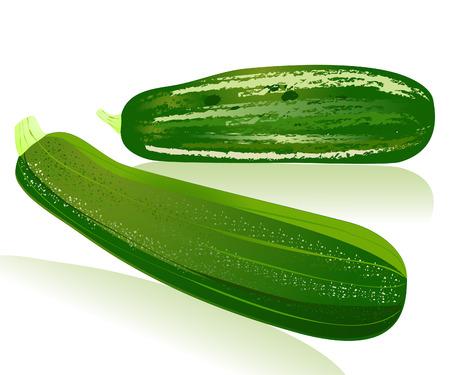 squash: zucchini