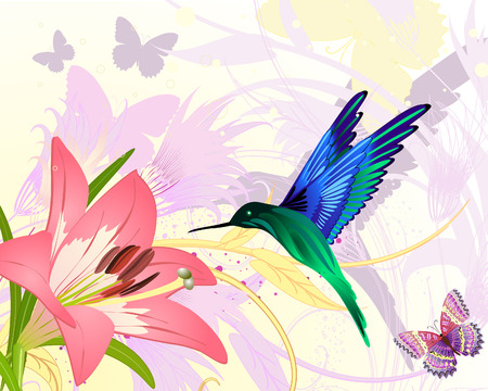 lily flowers collection: pink floral fantasy colibri Illustration